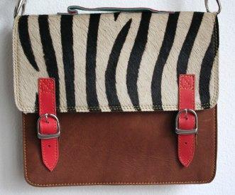Zebre brun 1